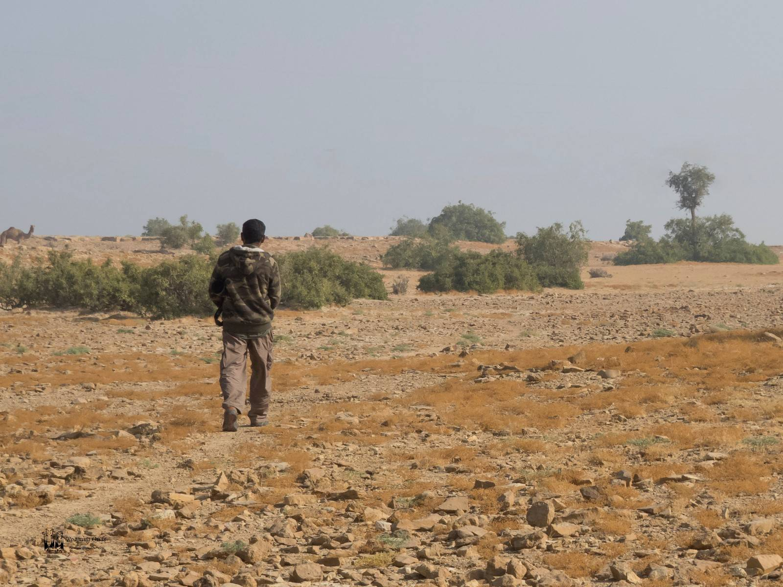 barren roads, jaisalmer