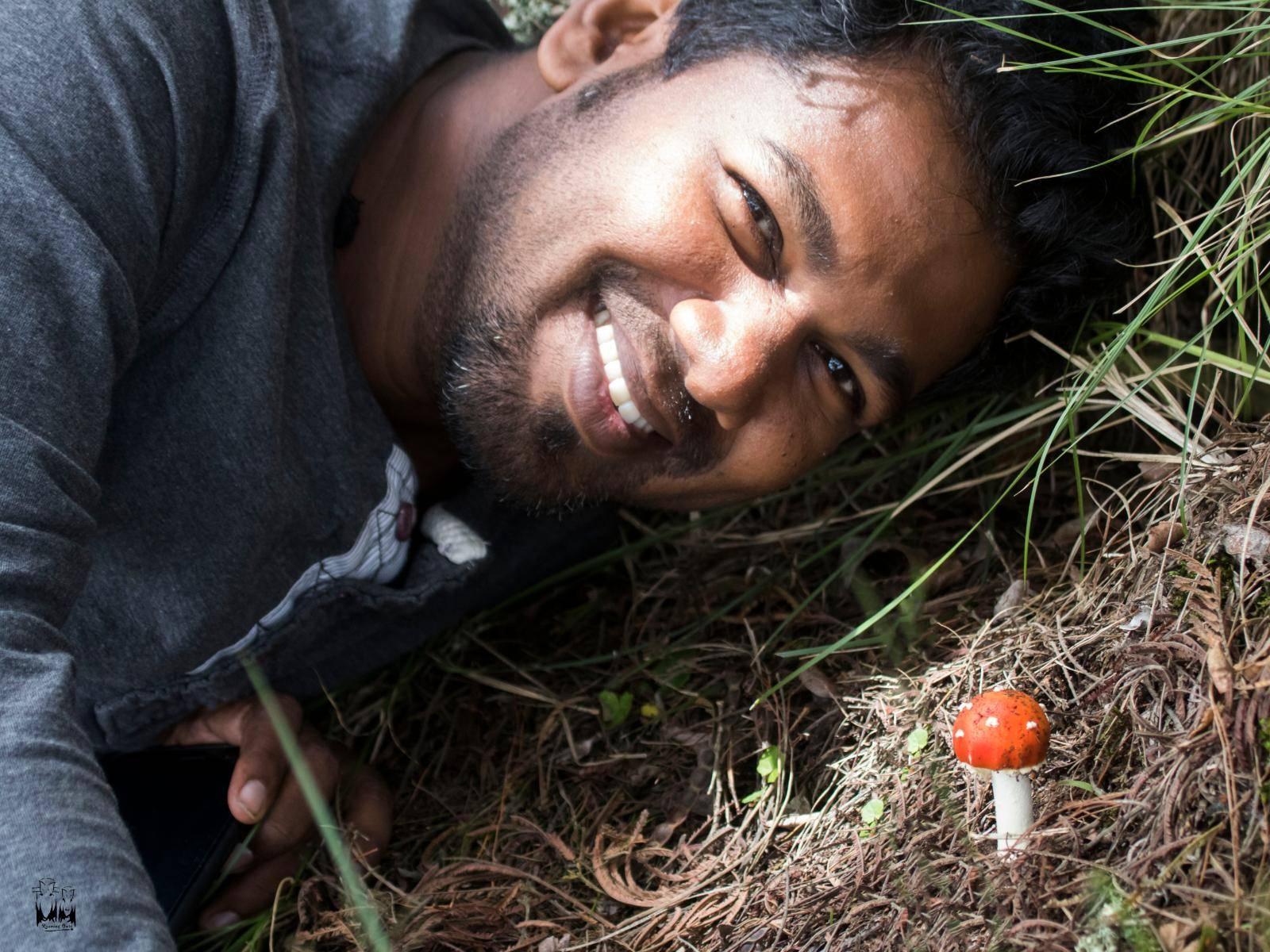 Red Mushroom,Magic Mushroom,Kodaikanal Mushroom,Dolphin Nose,Vinod Sadhasivan