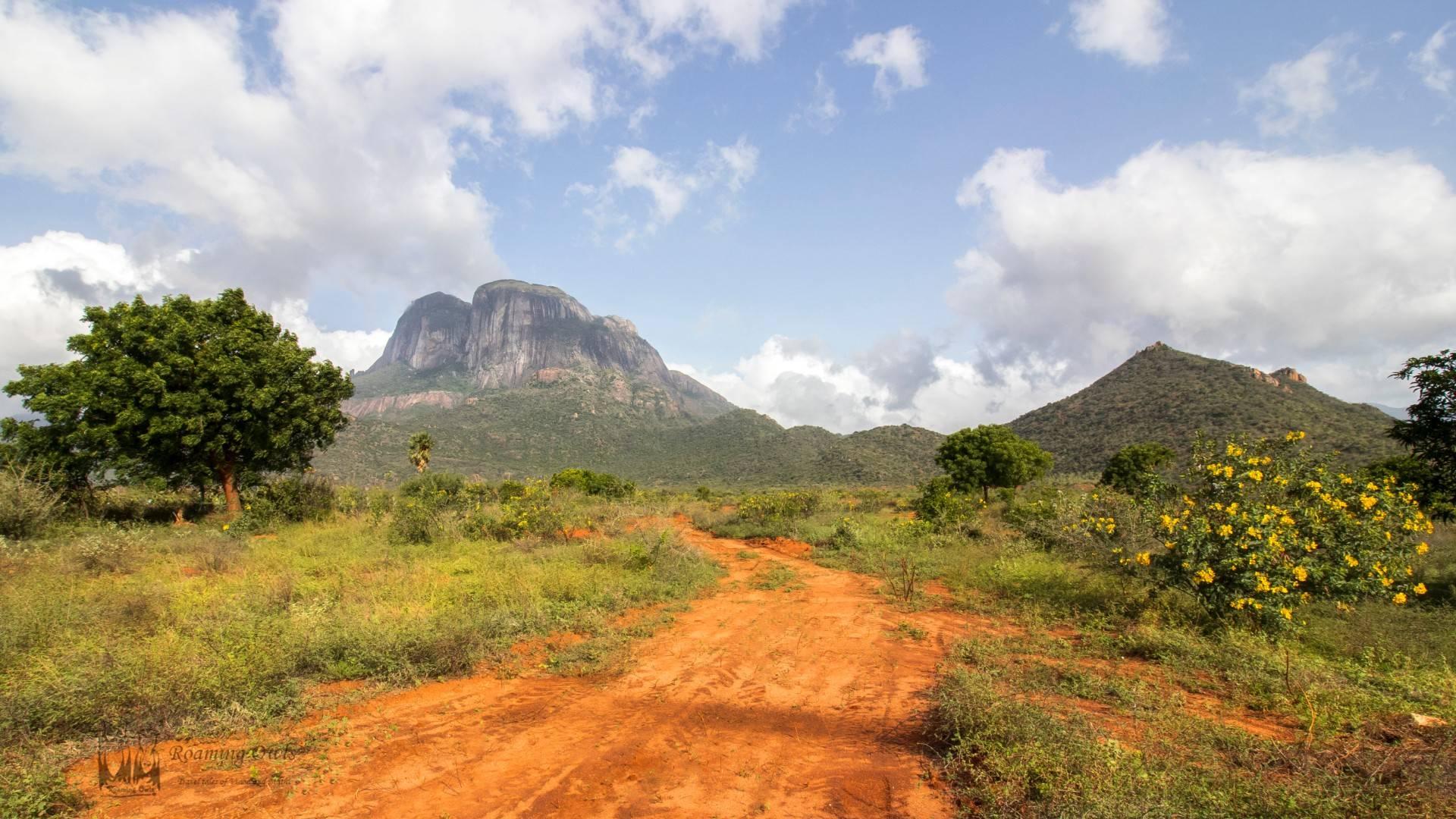 Kalakkad Mundanthurai Tiger Reserve (KMTR) , red soil