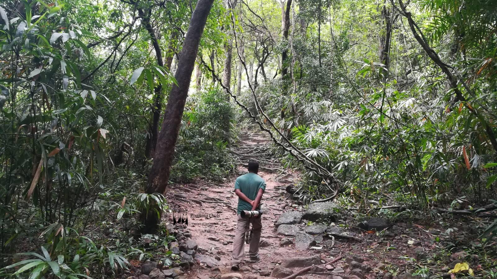 Meenmutty falls trekking