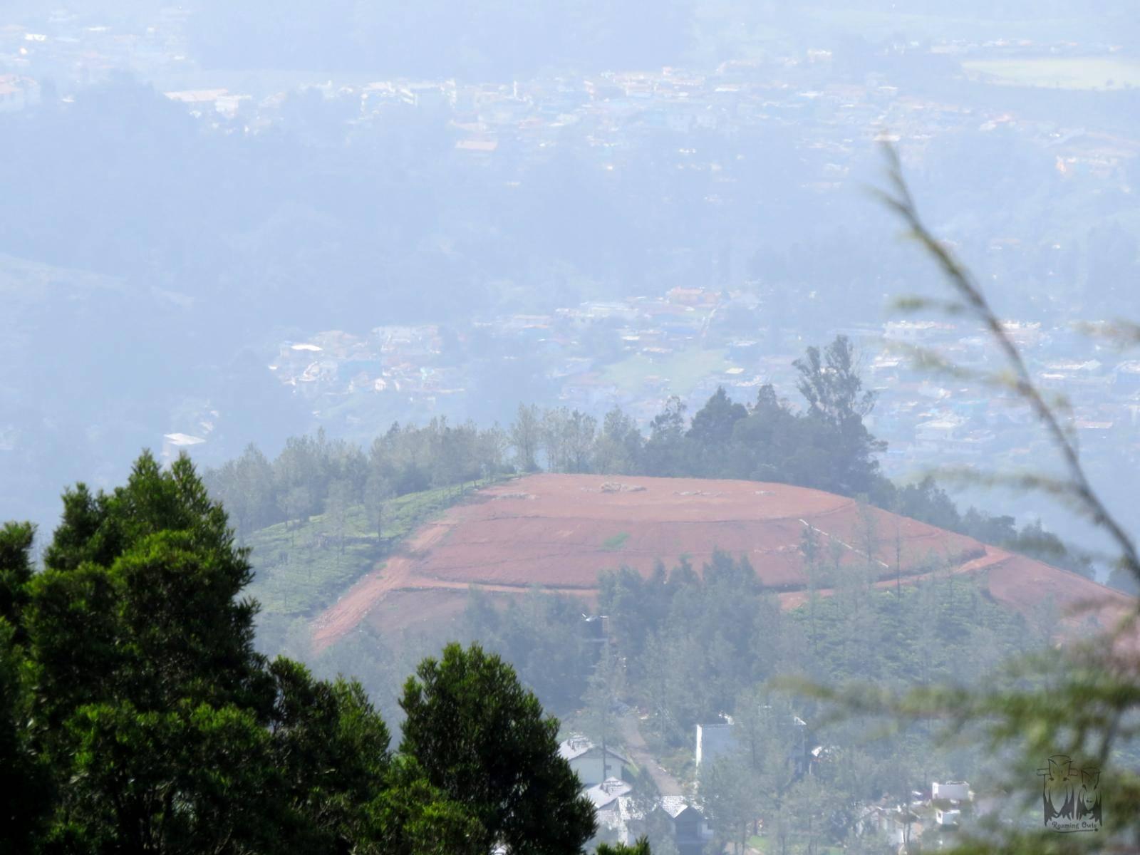 Nilgiri destruction, neelkurinji loss of habitat