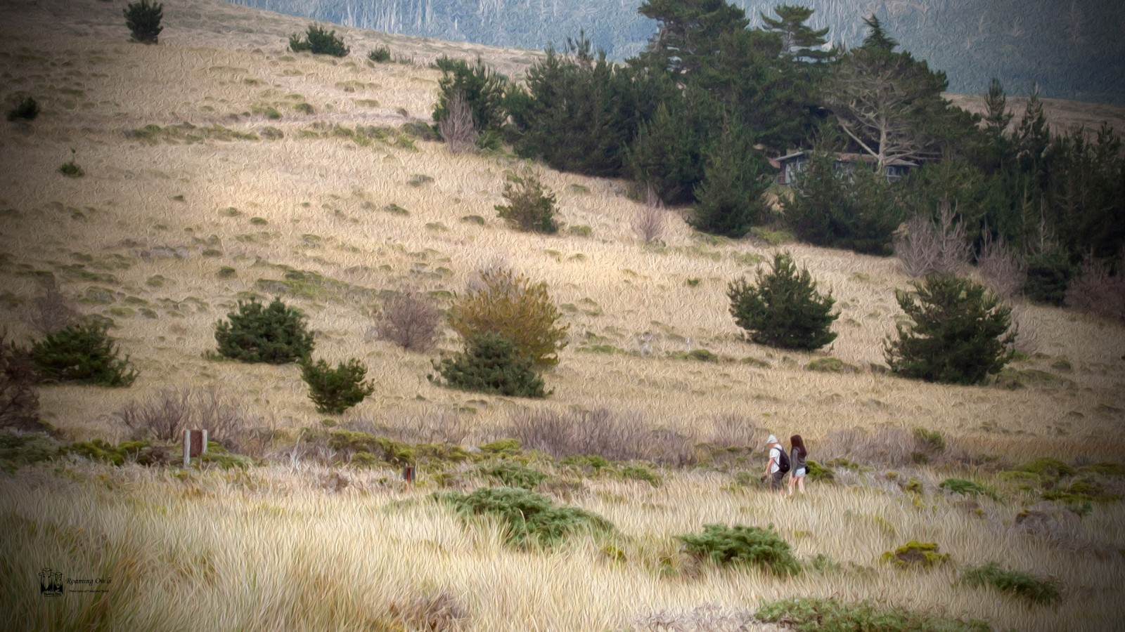 Couple walking in grasslands of Point reyes