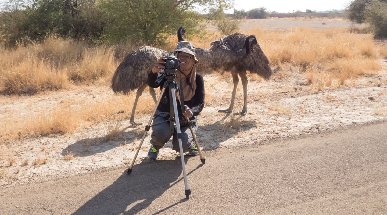 Emu, shanti chellappa , jaisalmer, Fossil park