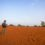 Desert of Tamilnadu – Theri Kaadu