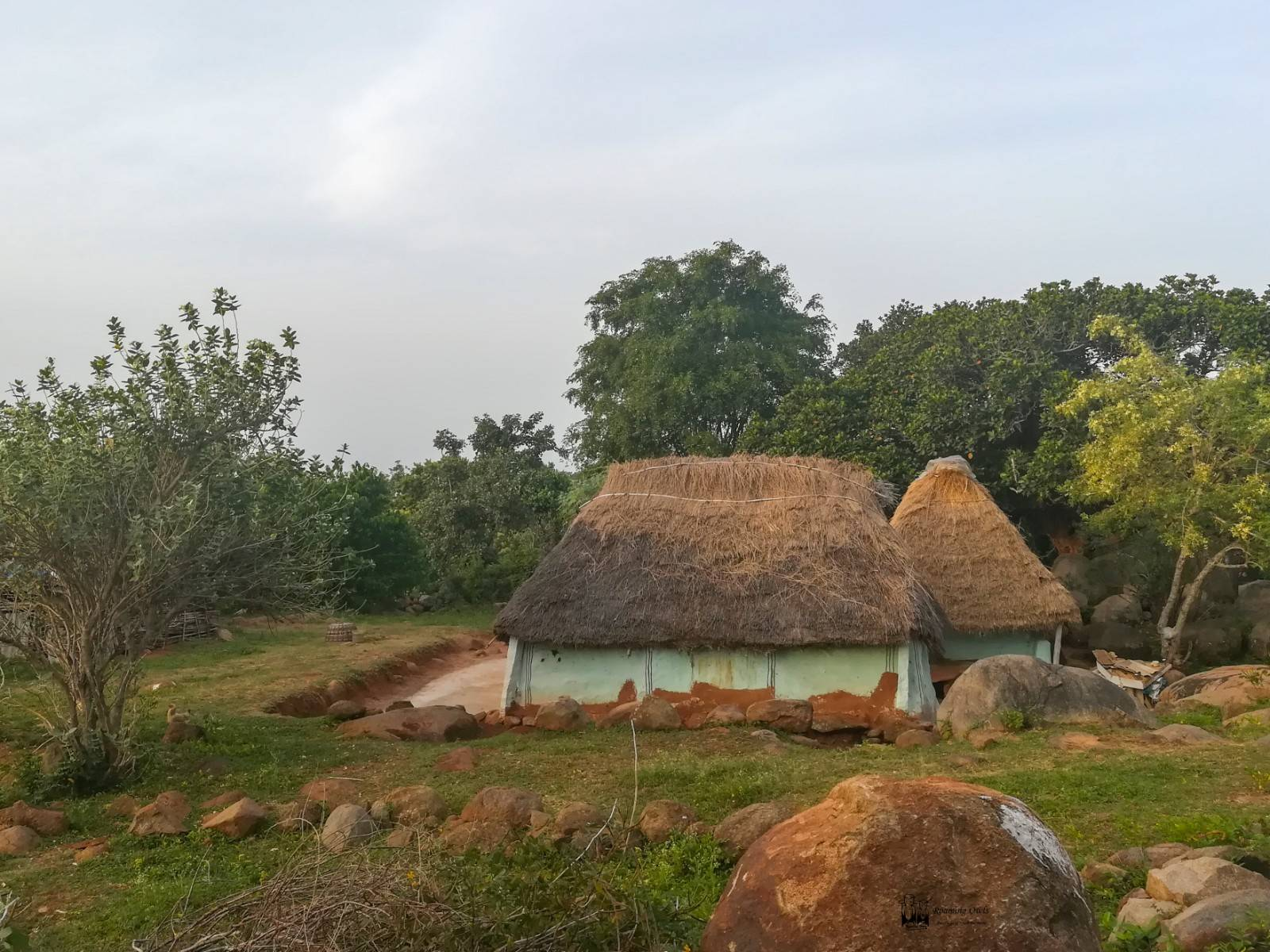 yelagiri, tribal hut