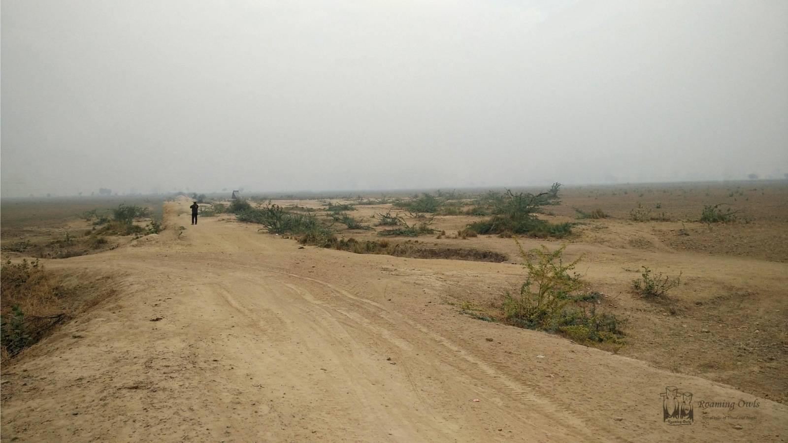 Open barren land,Rajasthan dry lands,Bikaner