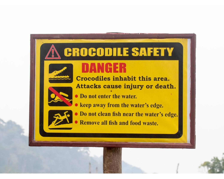 andaman salt water crocodile,andaman birding,chidiya tappu