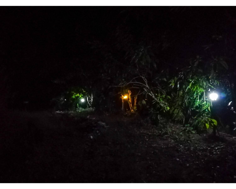 Ixire resort,Andaman birding,mount harriet stay