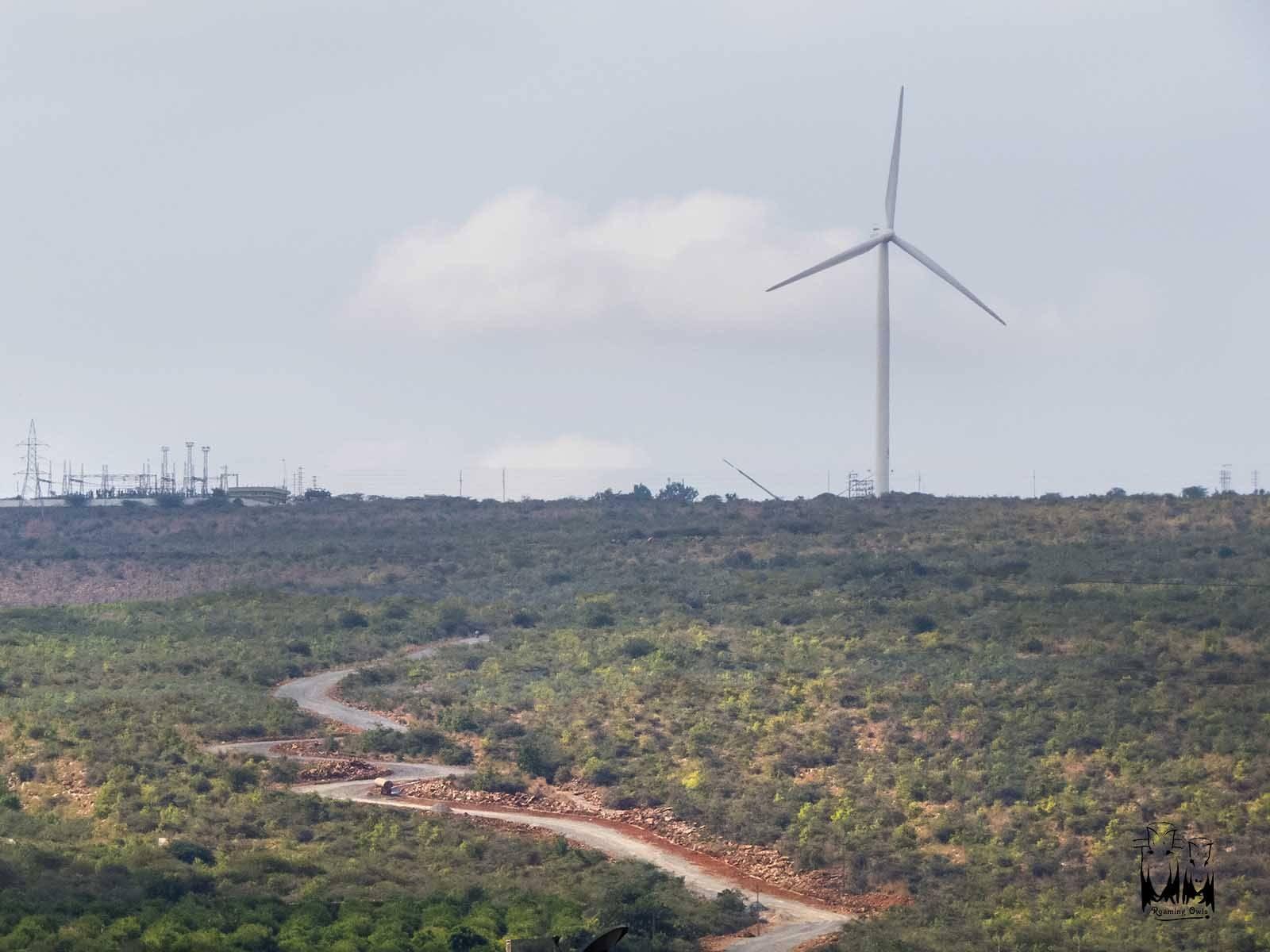 gandikota, windmill, winding road, scrub forest