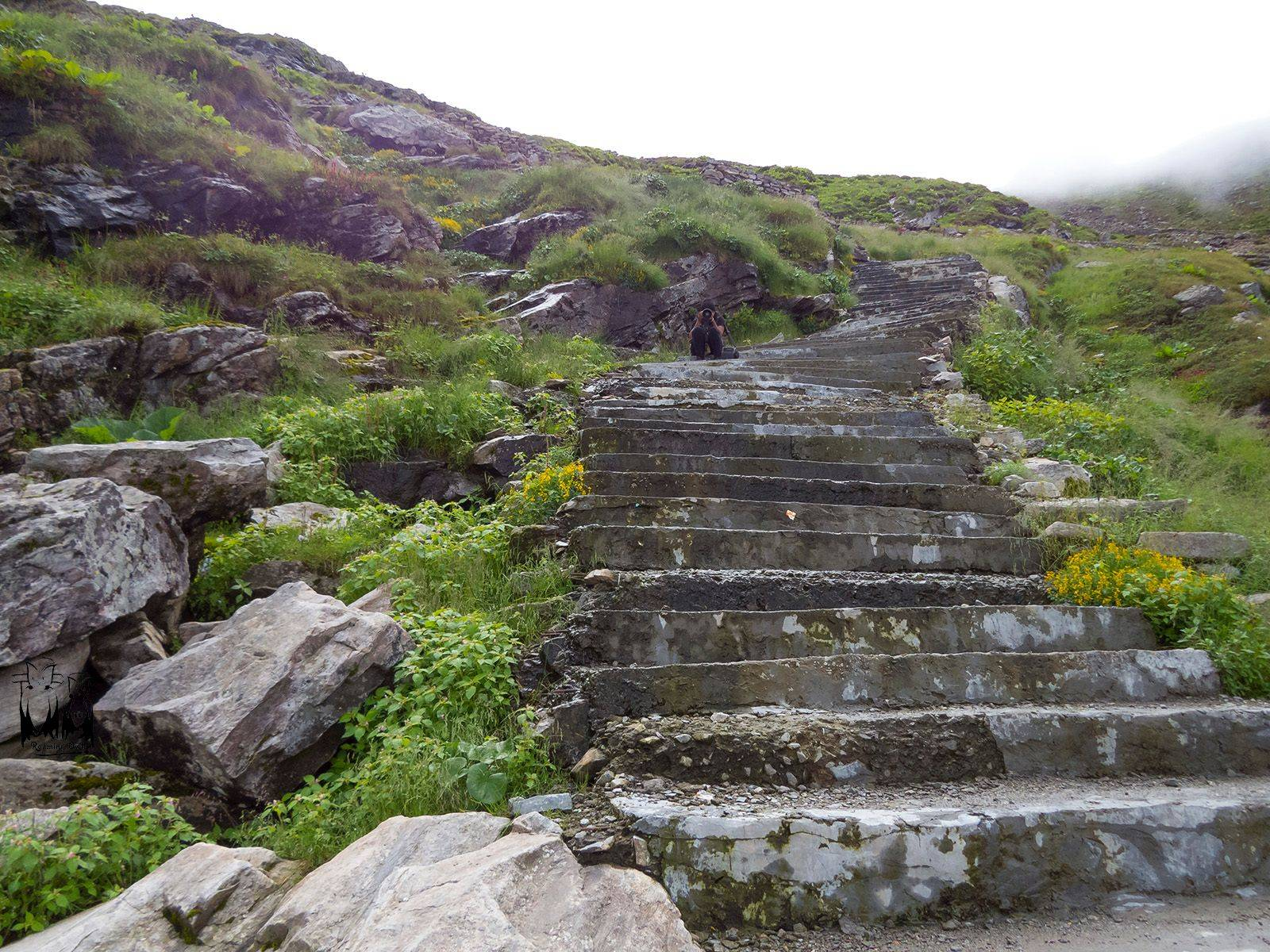 Steep steps , Hemkund sahib, trek , himalayas