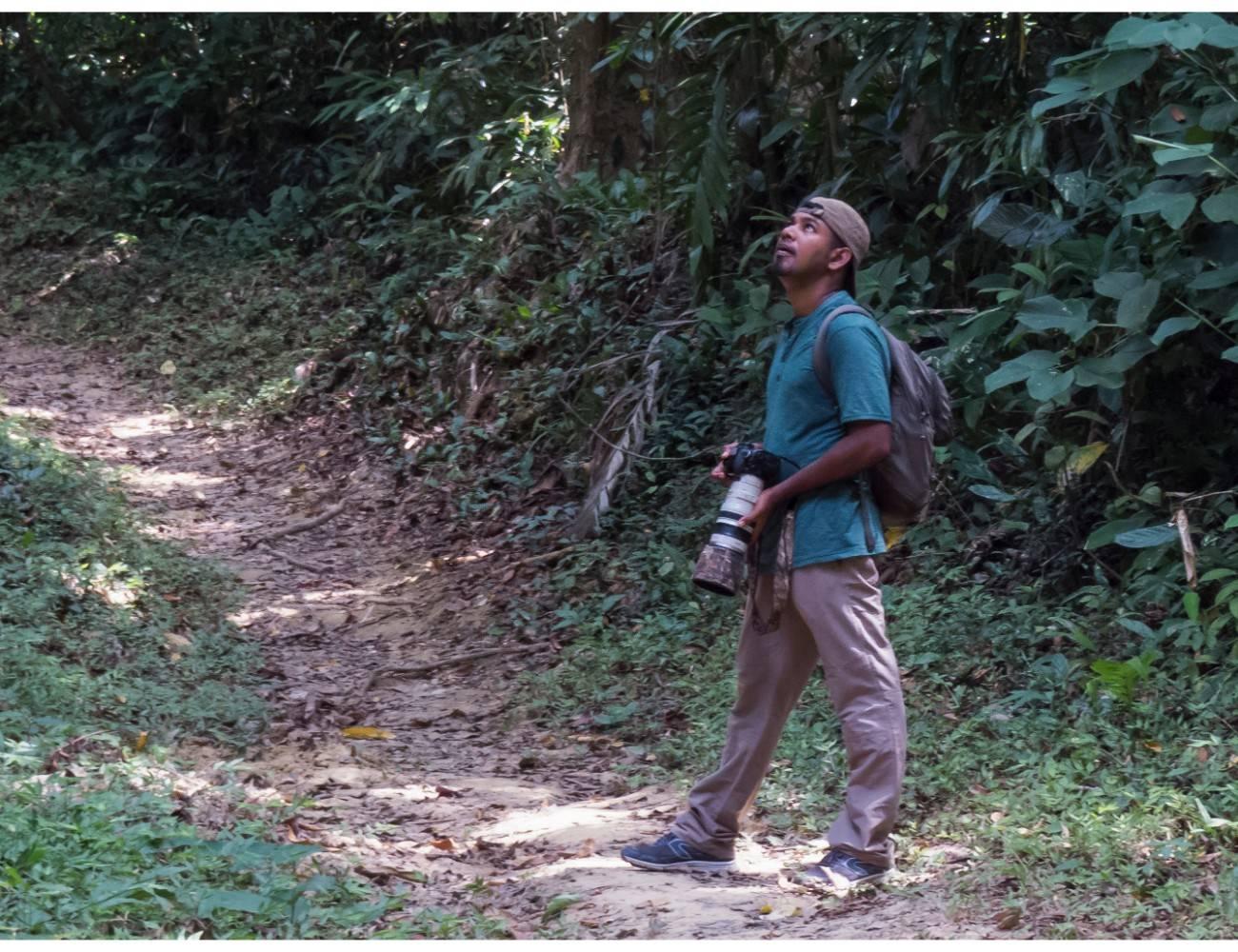 Andaman Serpent Eagle,Mount harriet birding,vinod sadhasivan,andaman birding