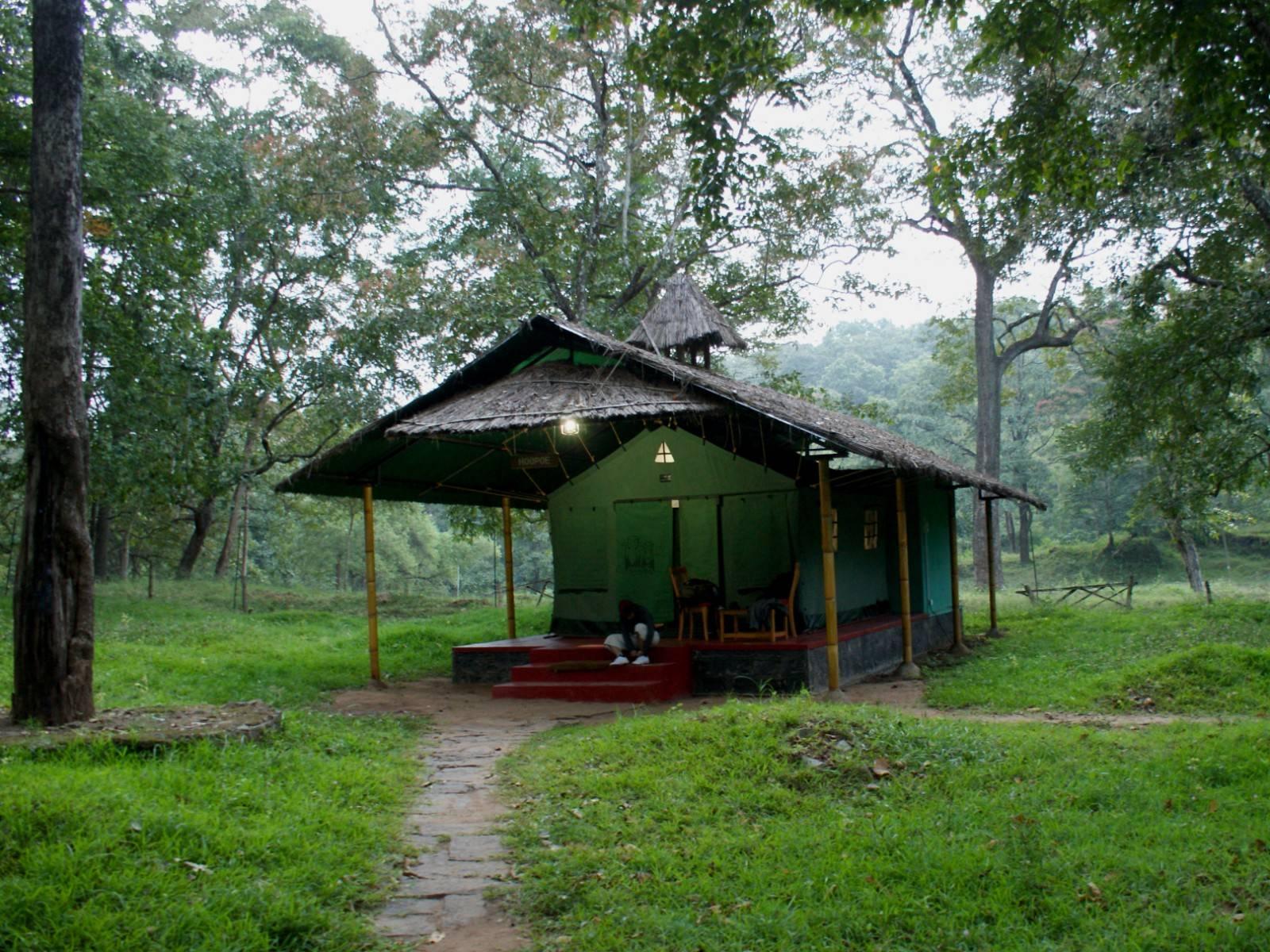 Parambikulam tiger reserve,parambikulam tent stay,karimala trek