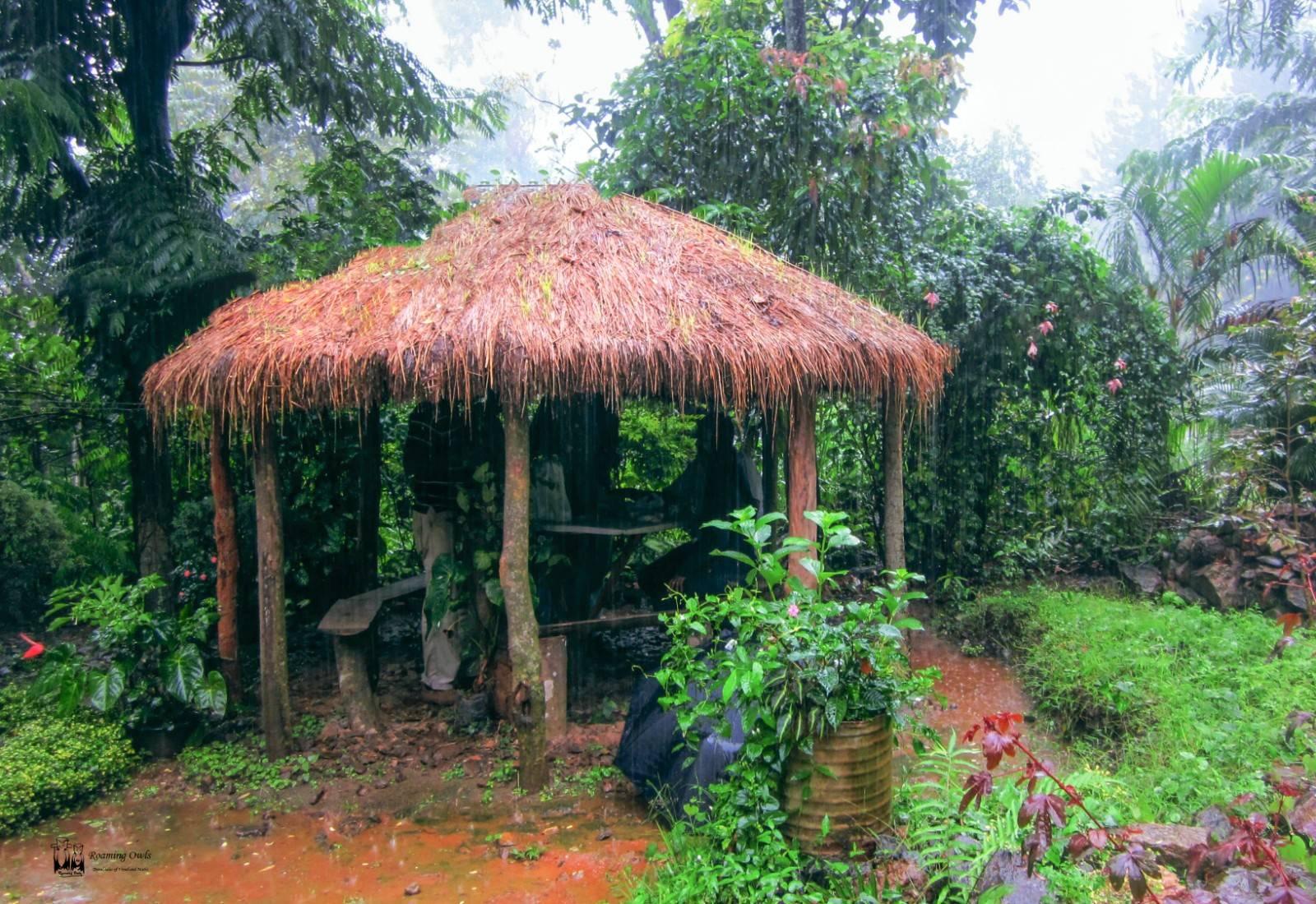 roadside restaurant,rain,srilanka,sothi kuzhambu