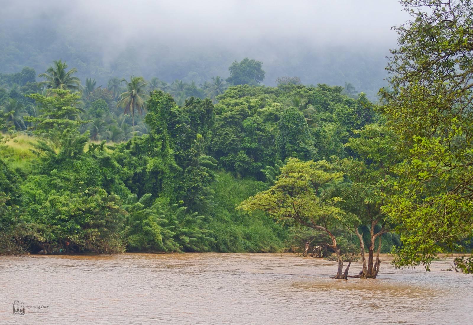 Srilanka,pinnwala,rain,flood