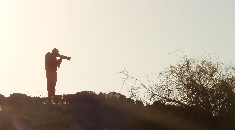 vinod, silhouette , jaisalmer, fossil park
