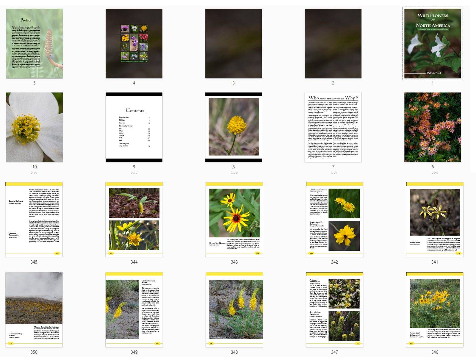 Wildflowers of north america, book pages , vinod, Mathi